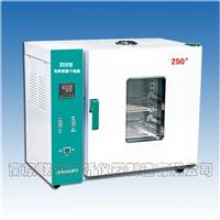 电热恒温干燥箱,矿石分析用