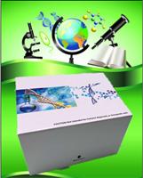 bFGF鸡碱性成纤维细胞生长因子(bFGF)ELISA试剂盒