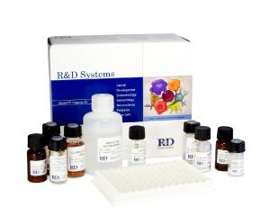 大鼠胰岛素(INS)ELISA试剂盒