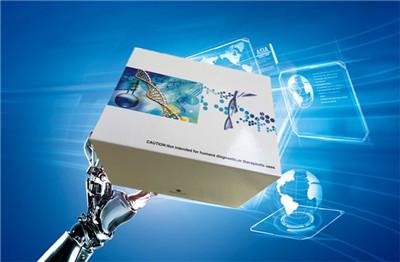 马免疫球蛋白E(IgE)ELISA试剂盒