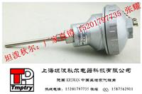 PT100温度传感器(高温型,铠装式)