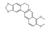 SBJ-I0132小檗�A,2086-83-1