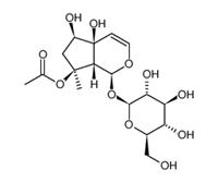 SBJ-I04776926-14-3,乙酰哈巴苷