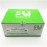 SBJ-DL-001-100ml�K木素伊�t(HE)染色��┖�