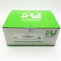 BP-DL121-50ml普鲁士蓝染色试剂盒(核固红法)