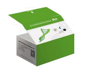 大鼠糖原合酶(GCS)elisa��┖�