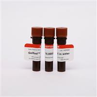 木瓜蛋白酶�腋∫� LS003126(新��A003124)