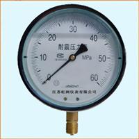 YN-100耐振压力表