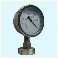 YTP-100MN隔膜压力表(螺母式)