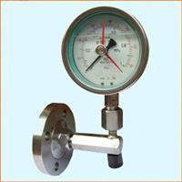 YTP-100MGL隔膜压力表(角形法兰)