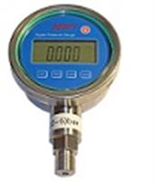 PY812差压型单晶硅数字压力表产品介绍