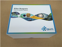 大鼠游离脂肪酸(FFA)ELISA试剂盒