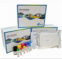 小鼠钙离子(Ca)ELISA试剂盒